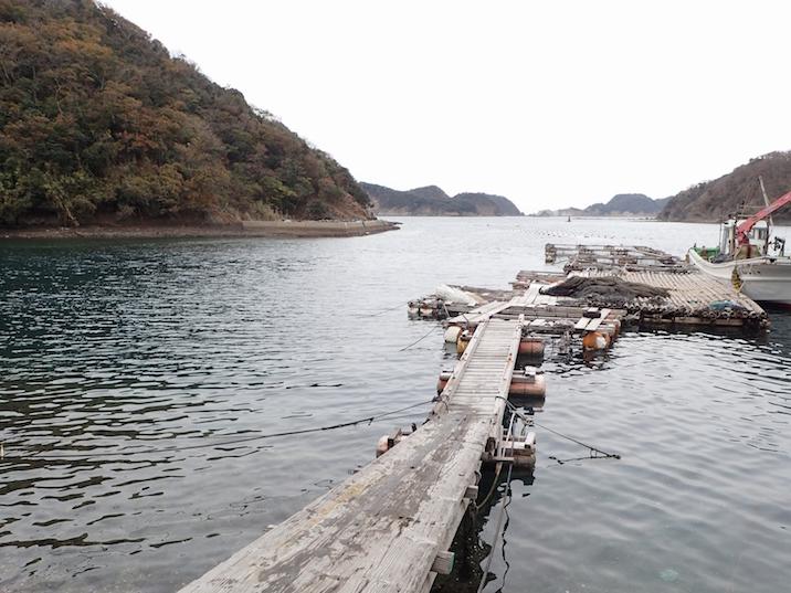 志多浦の漁港脇の桟橋。画面左側の水中にサンゴ礁が広がっています。